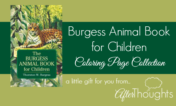 Afterthoughts The Burgess Animal Book For Children Coloring Page Collection