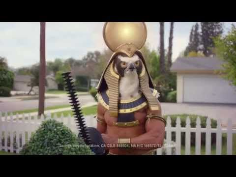 SolarCity Commercial - At Home with Ra Horticulture - YouTube AD