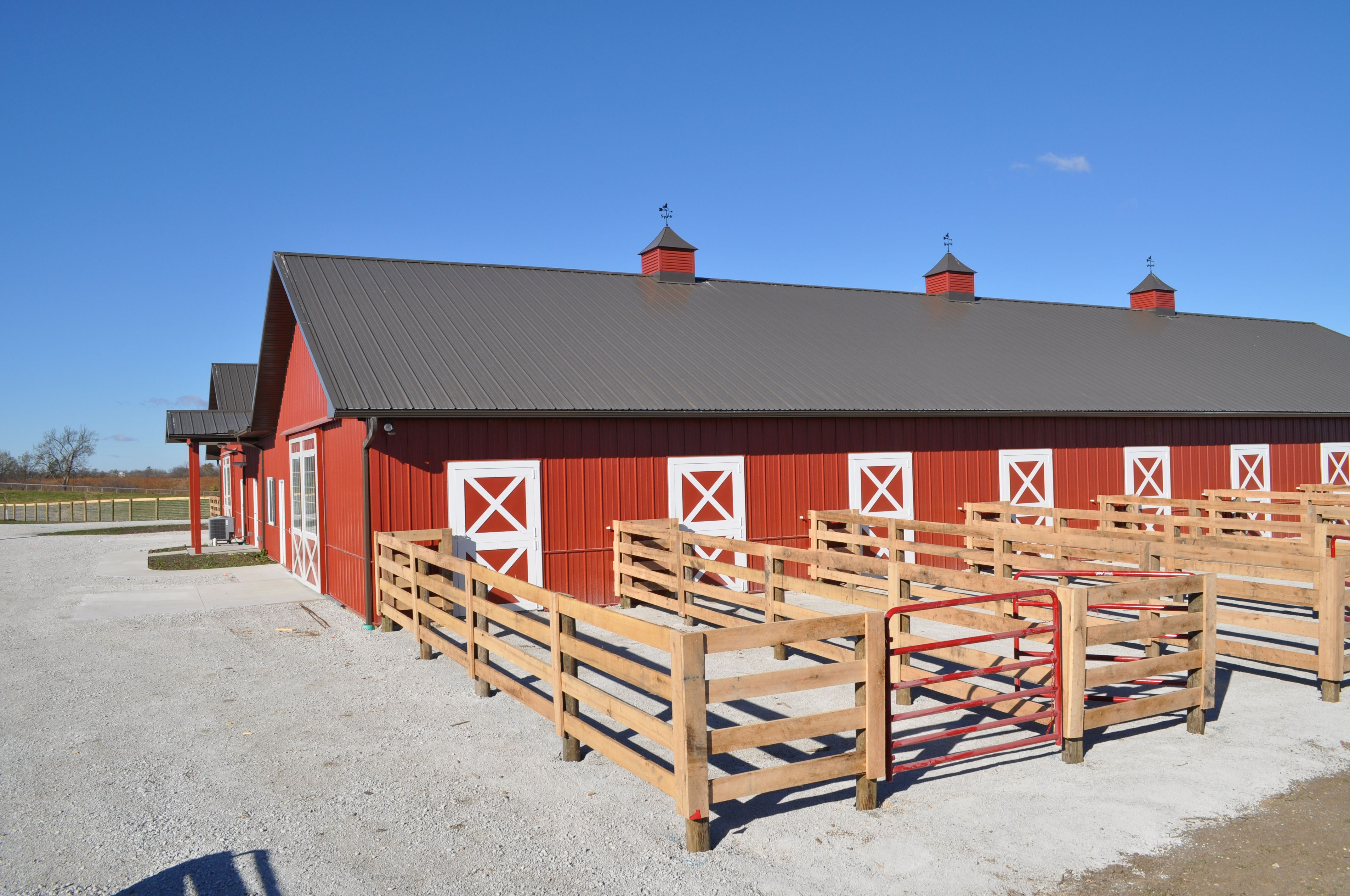 i want runs like these on my next barn but they will open up into