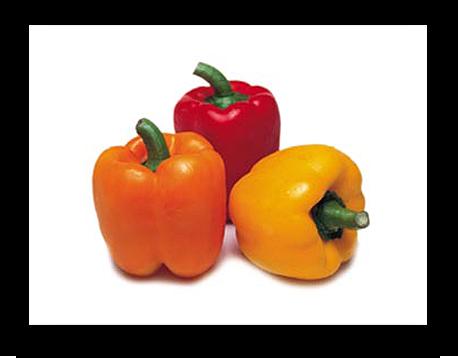 Pimento    Embora à primeira vista parece difícil de acreditar, o pimento é o vegetal com mais alto teor de vitamina C, tendo também uma ação tonificante sobre o estômago. http://www.bonduelle.pt/pimento
