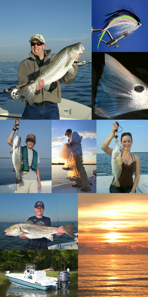 Pin On Virginia Fly Fishing Guide On Chesapeake Bay