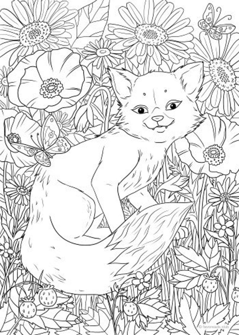 Little Fox Coloring on a budget