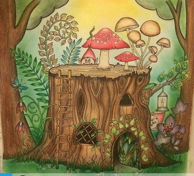 Coloring Book Tree Stump Johanna Basford Adult Books Joanna Secret Garden Colored Pencils Card Making Enchanted Forest