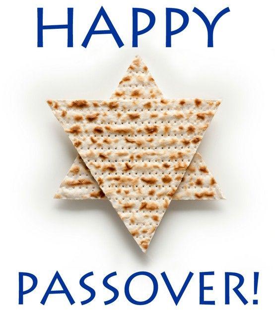 Happy Passover!   Shade Eyecare   Pinterest   Katzen