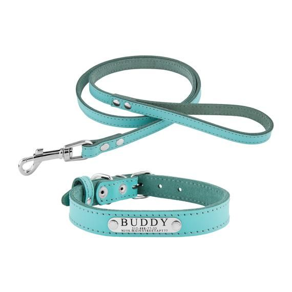 Collar Leash Set Dog Collar And Leash Dog Collar And Lash Sets For