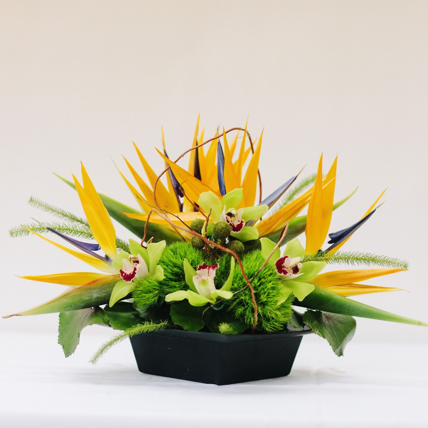 Birds of Paradise Fresh flowers arrangements, Tropical