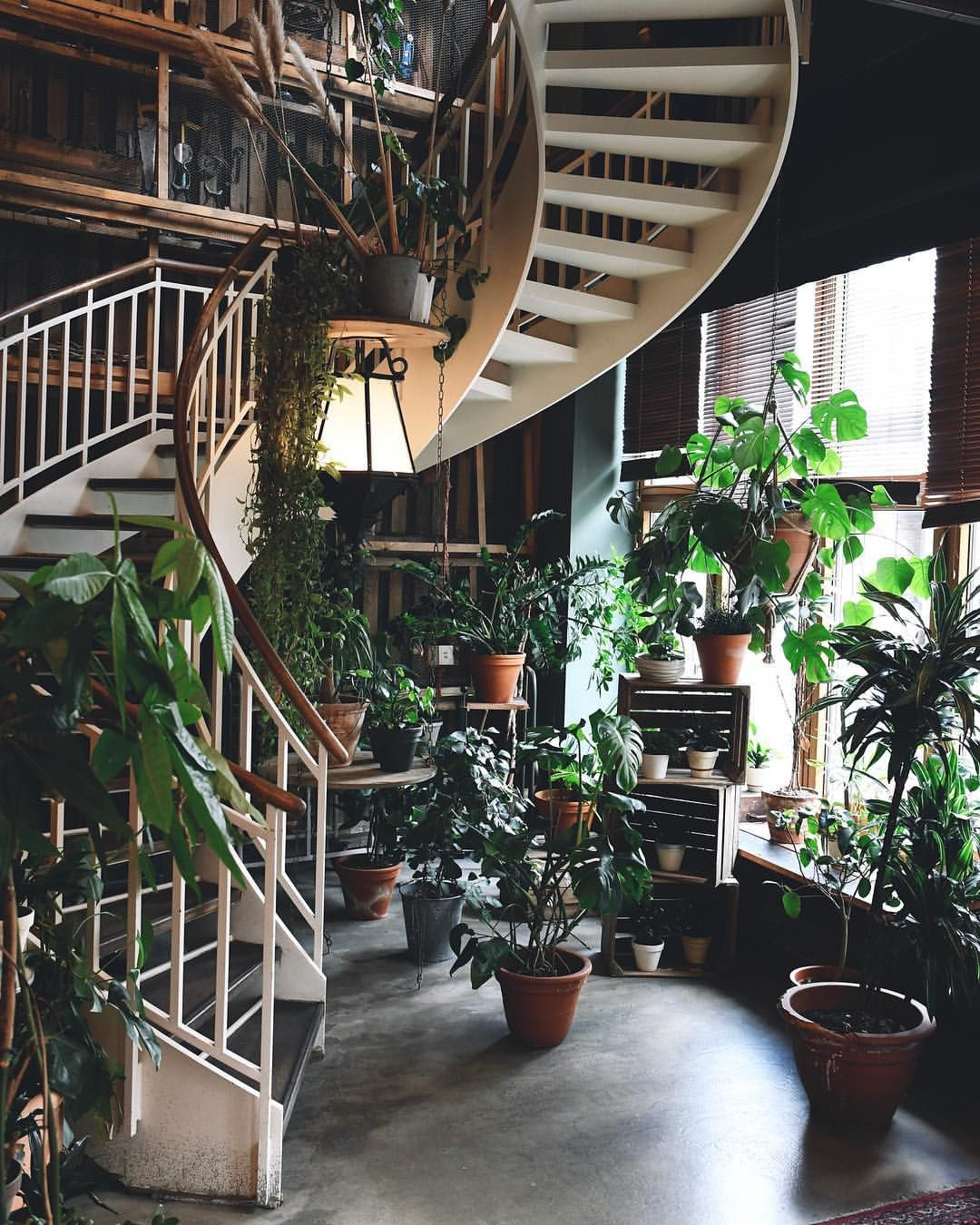Pin by Kathy Tanaka on DECOR→JUNGLE | Stairways, Home
