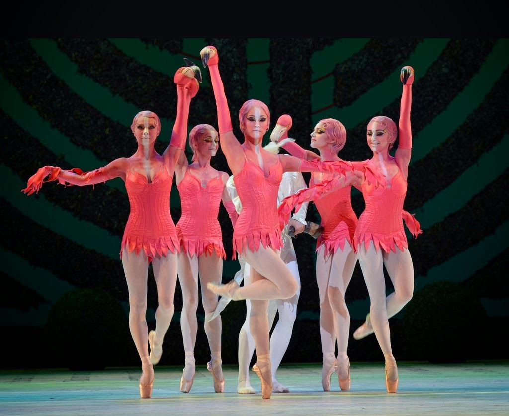 A Maquiagem No Bale Con Imagenes Tutu Ballet Fotografia De