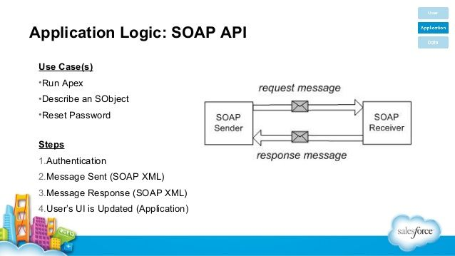 Application Logic: SOAP API Use Case(s) •Run Apex •Describe