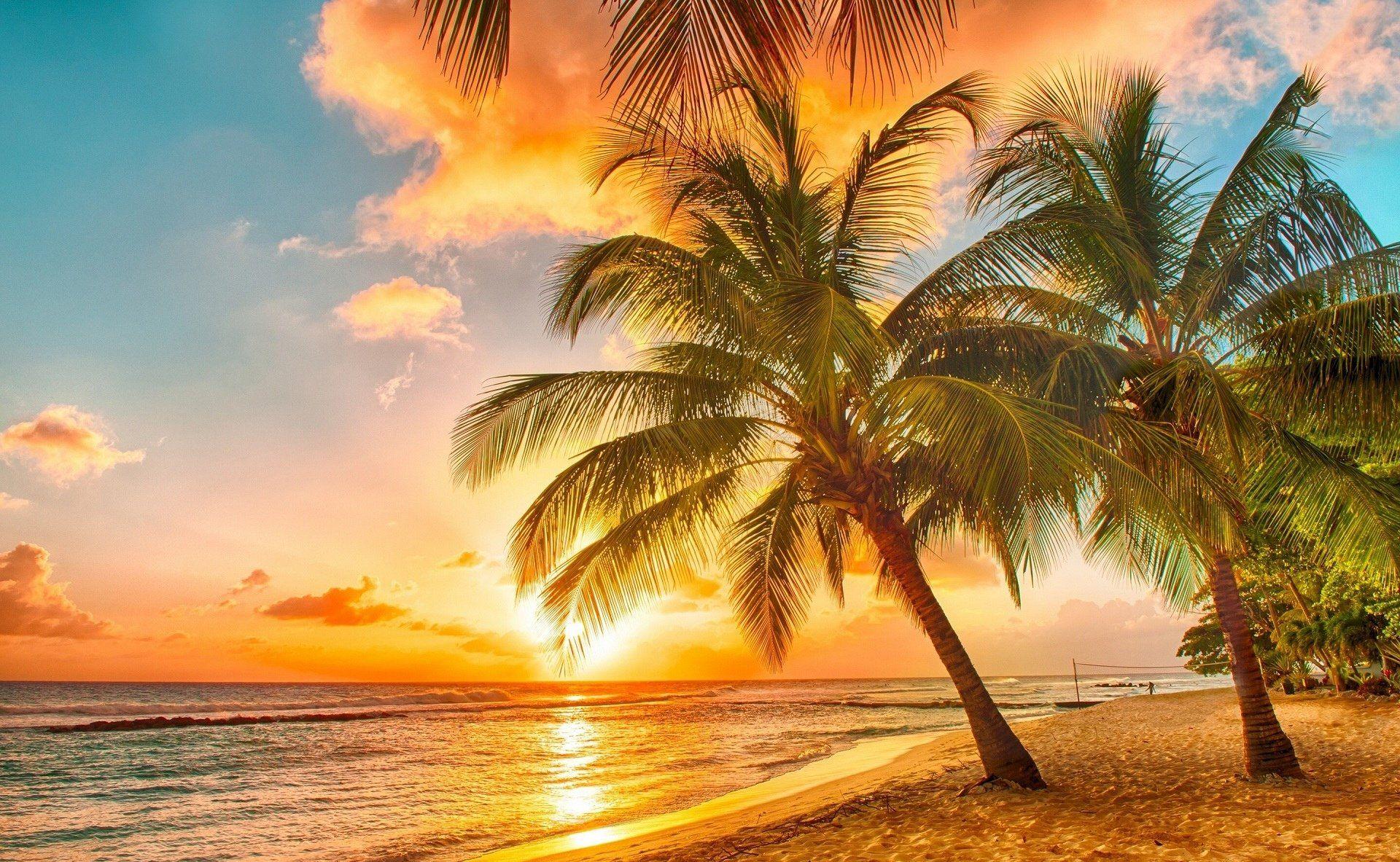 sunset hammock | The Heartbreak Hypnotist ? - Sean Wheeler | Pure ...