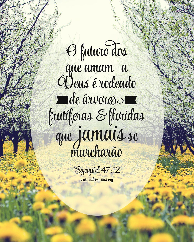 Rpsp Biblia Ezequiel Frases Versiculos Adventistas Ezequiel
