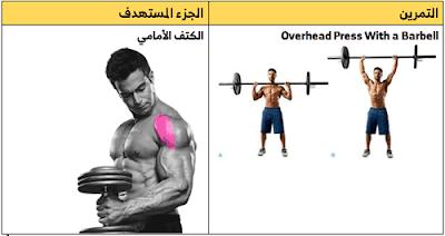 تمارين الكتف بالترتيب بالصور Shoulder Workout Overhead Press Barbell