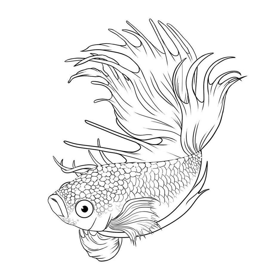 Adult Coloring Page Fish Sketch Fish Drawings Fish Art