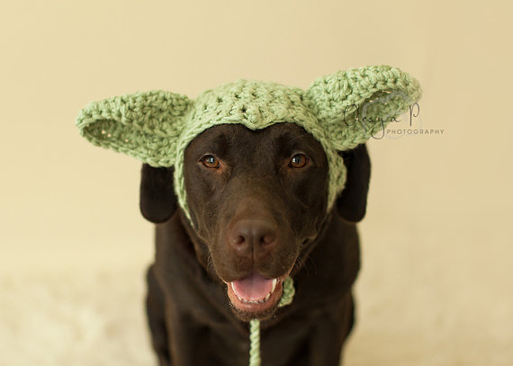 Download Crochet Pattern 040 Large Dog Yoda Hat Halloween Hat