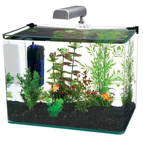 Radius 5 Gallon Glass Aquarium Kit Fish aquarium decorations