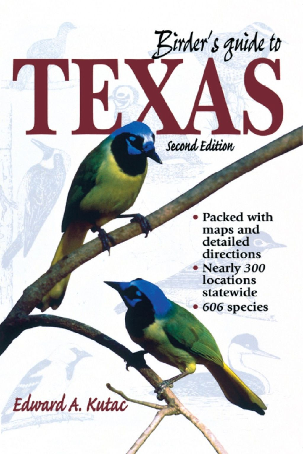 Birder's Guide to Texas (eBook) in 2019 | Products | Texas, Exotic