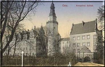 Oleśnica - zamek