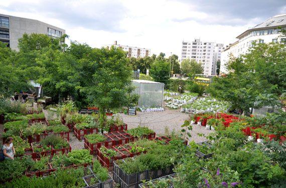 Diy Trend Kruidentuin : Grüne garten ideen urban gardening liegt voll im trend abb