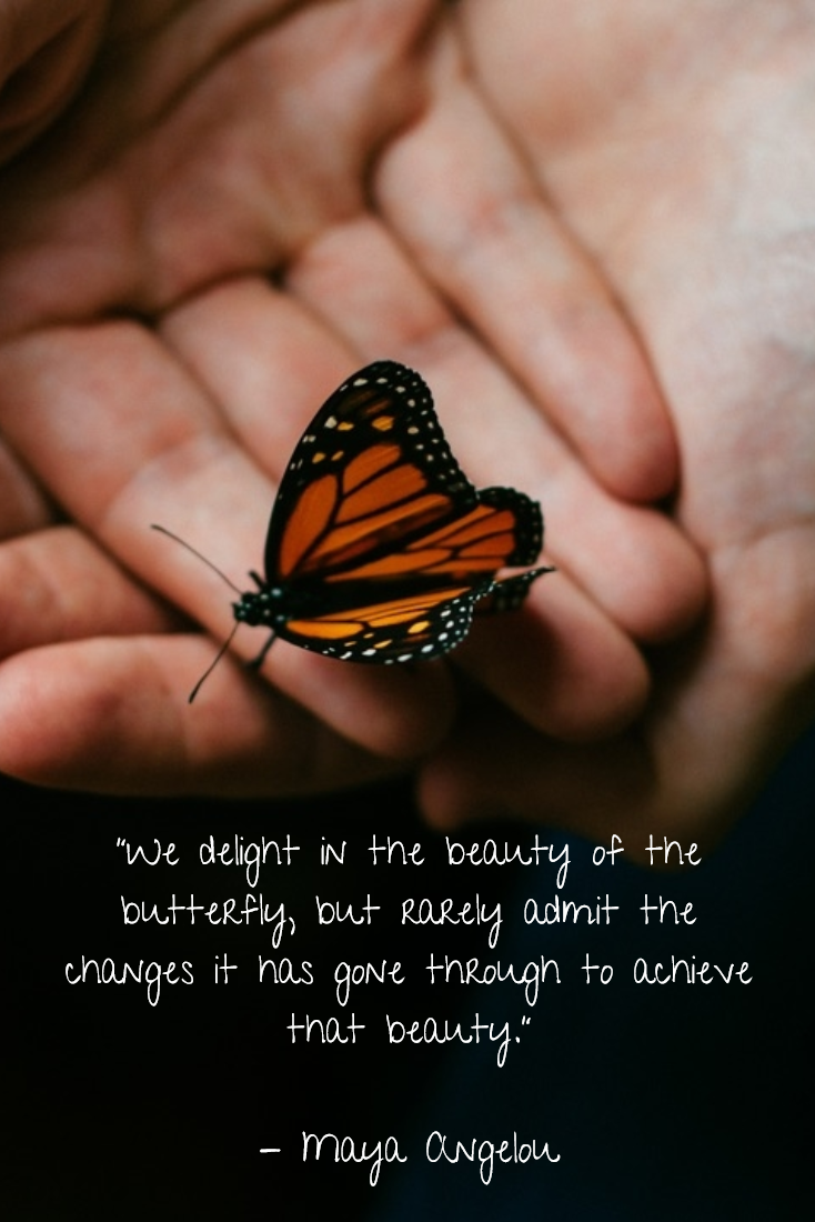 The importance of monarch butterflies butterfly inspirational the monarch butterfly has become a symbol of conservation it is familiar to all of biocorpaavc Gallery