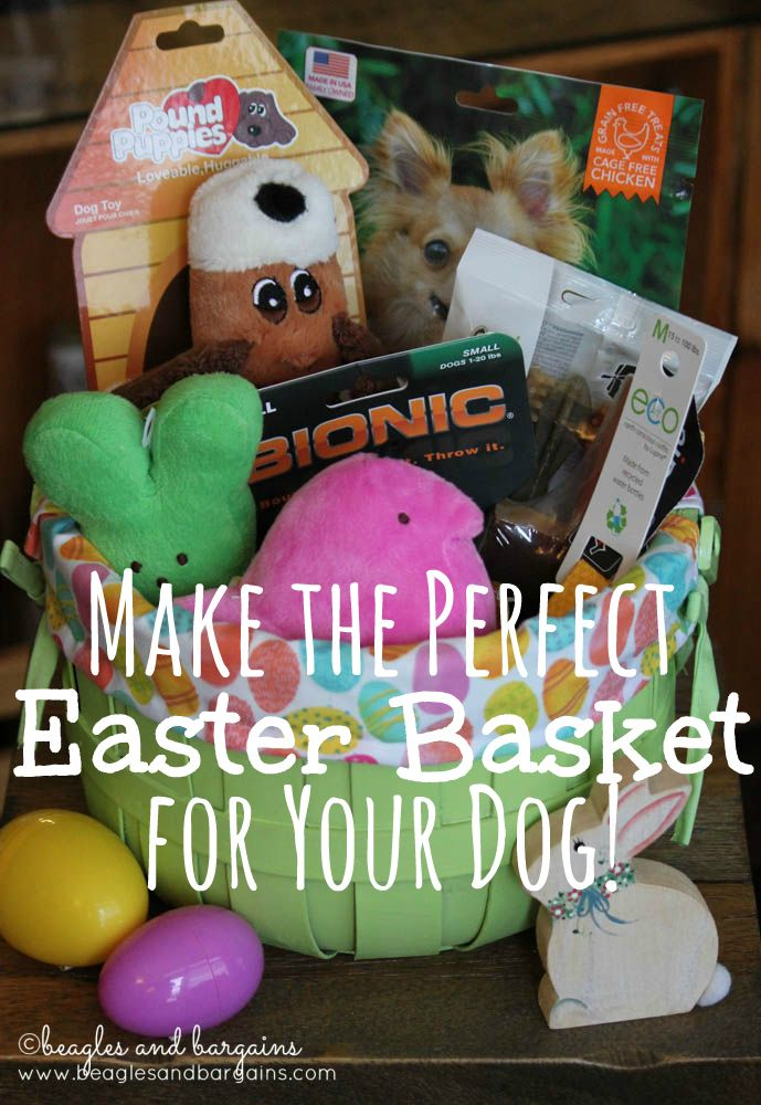 Make the perfect easter basket for your dog doggy easter make the perfect easter basket for your dog negle Images