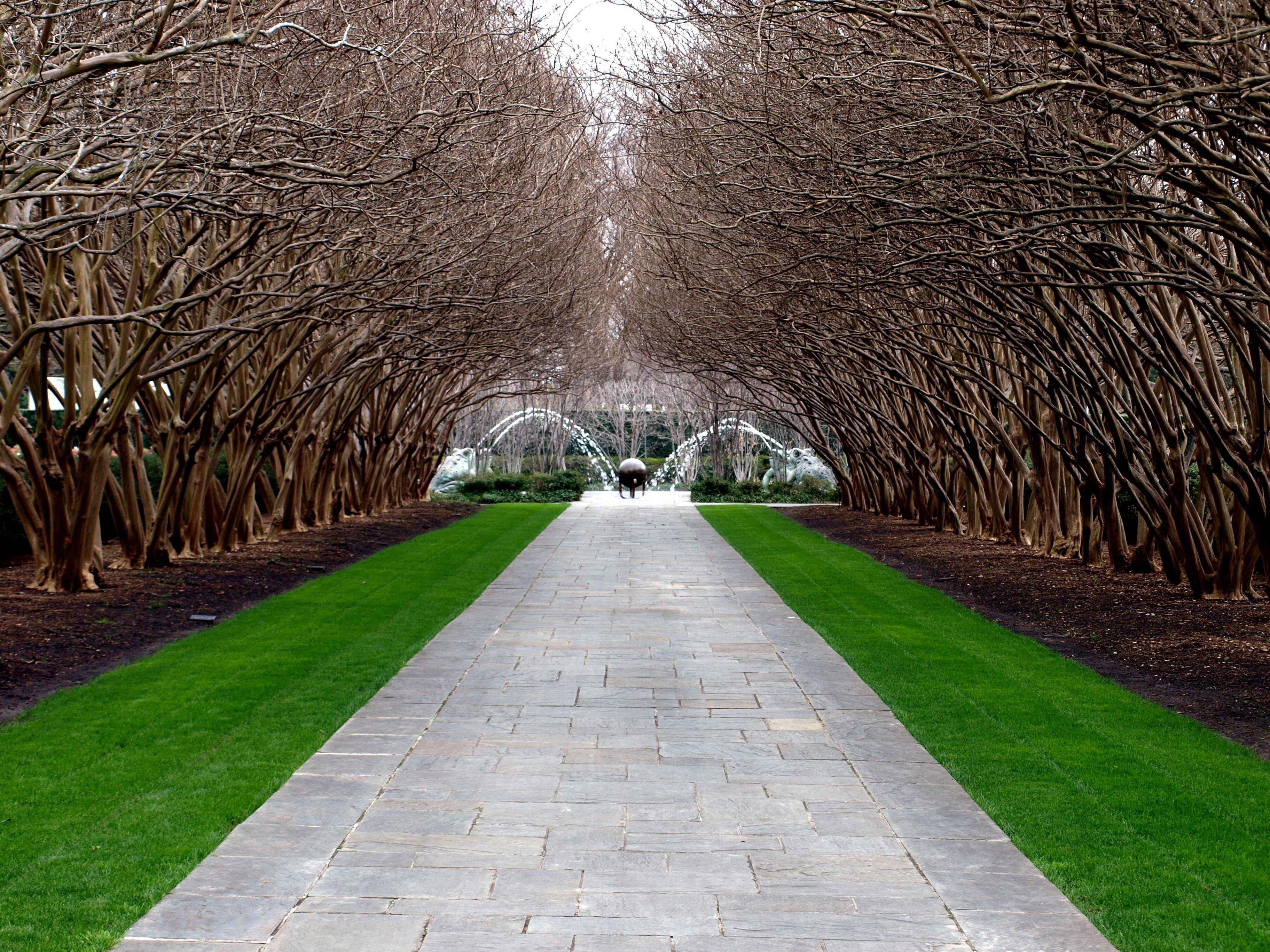 c6cb12e2432268ac7eb7ecab50c1018c - Dallas Arboretum Botanical Gardens Dallas Tx