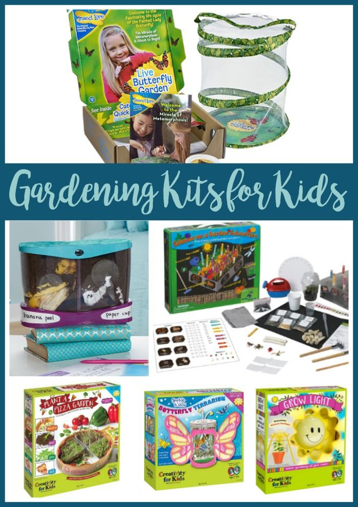From Soil To Seed Engaging Gardening Kits For Kids With Images