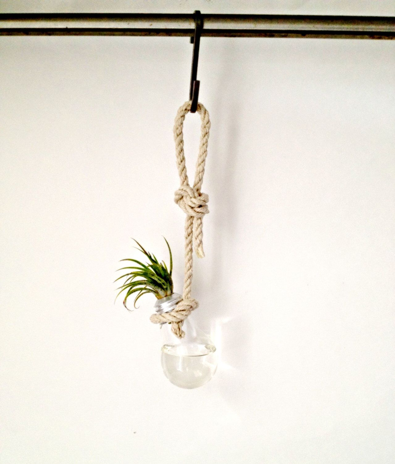 Hanging Plant Wall Decor : Light bulb bud vase hanging from hemp rope wall decor
