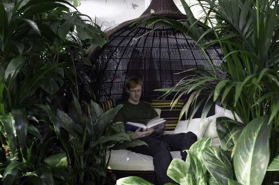 Jungle Lounge Google Zurich Office  Creative Space Inspiration
