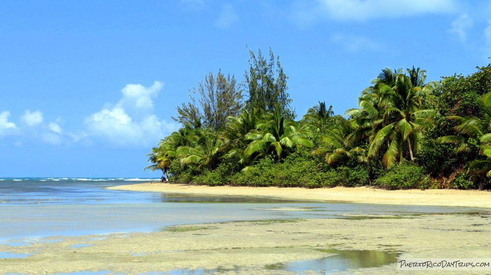 Puerto Rico Day Trips | Puerto rico, Day trips, Travel guide