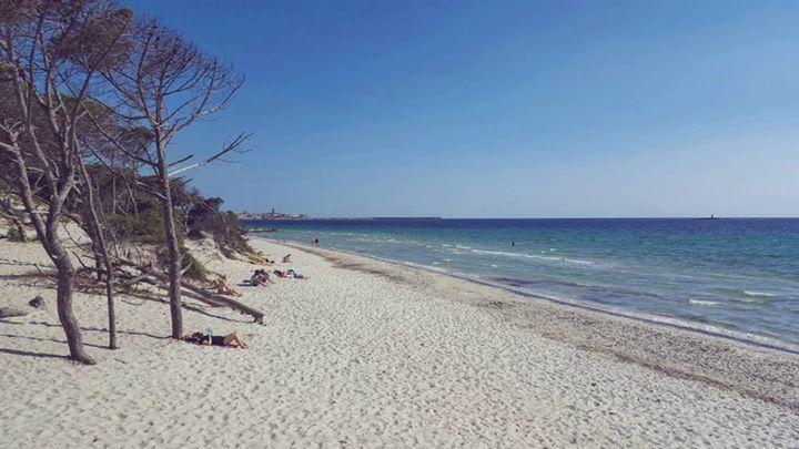 by http://ift.tt/1OJSkeg - Sardegna turismo by italylandscape.com #traveloffers #holiday | Una giornata d'estate! #Alghero #lanuovasardegna Foto presente anche su http://ift.tt/1tOf9XD | May 18 2016 at 12:55AM (ph sara_madeddu ) | #traveloffers #holiday | INSERISCI ANCHE TU offerte di turismo in Sardegna http://ift.tt/23nmf3B -