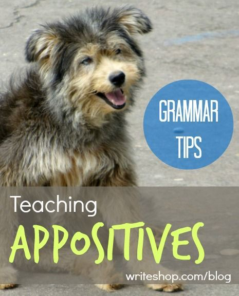 Grammar Tips Teaching Appositives