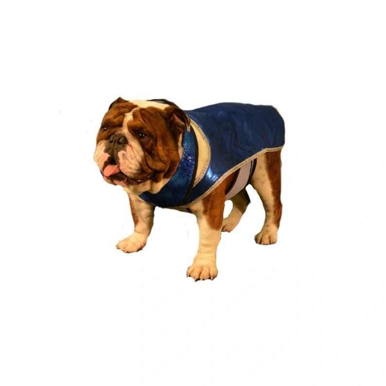 Dog Chiller Cool Coat Cool Coats Dog Coats Dogs