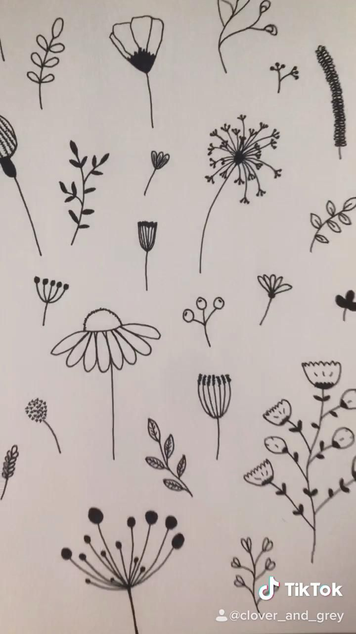 Photo of Pen illustrated floral doodle design