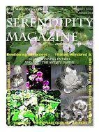 Serendipity Magazine Page 29  Story on Carverofwoodnivory