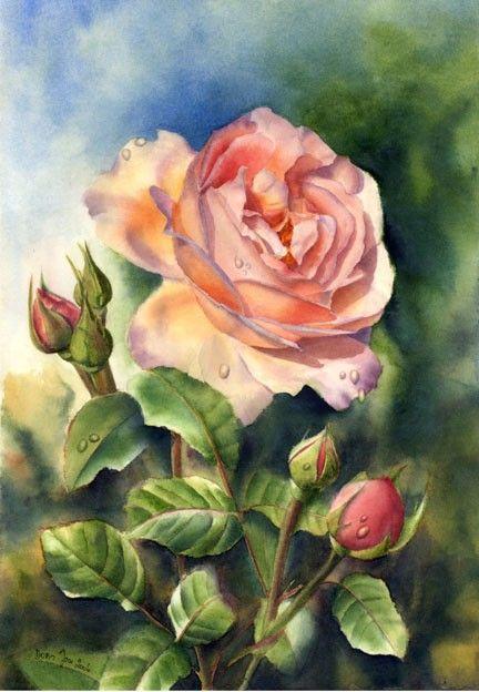 Rose stampa di un dipinto ad acquerello originale di di dorisjoa