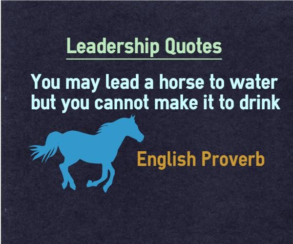 Leadership Quotes You May Lead A Horse To Water But You