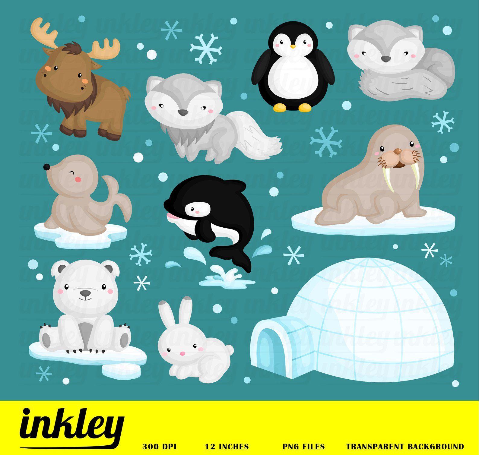 Arctic Animal Clipart Cute Animal Clip Art Wild Animal Etsy Animal Clipart Cute Doodles Drawings Arctic Animals