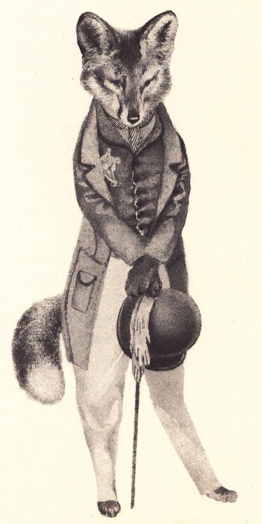 The Fantastic Mr Fox What the Cuss????