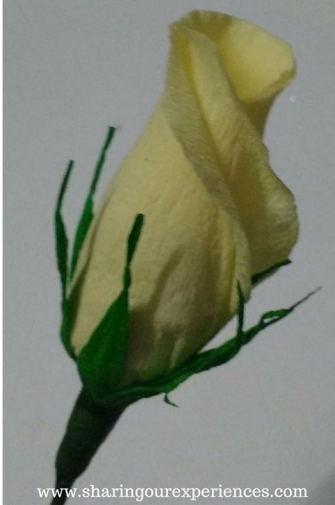 How to make Crepe Paper Rose buds #crepepaperroses