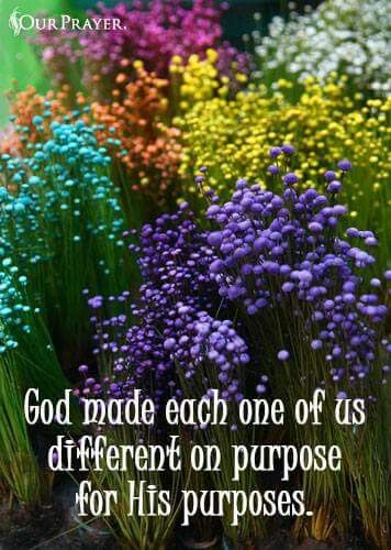 God Made For His Own Purpose