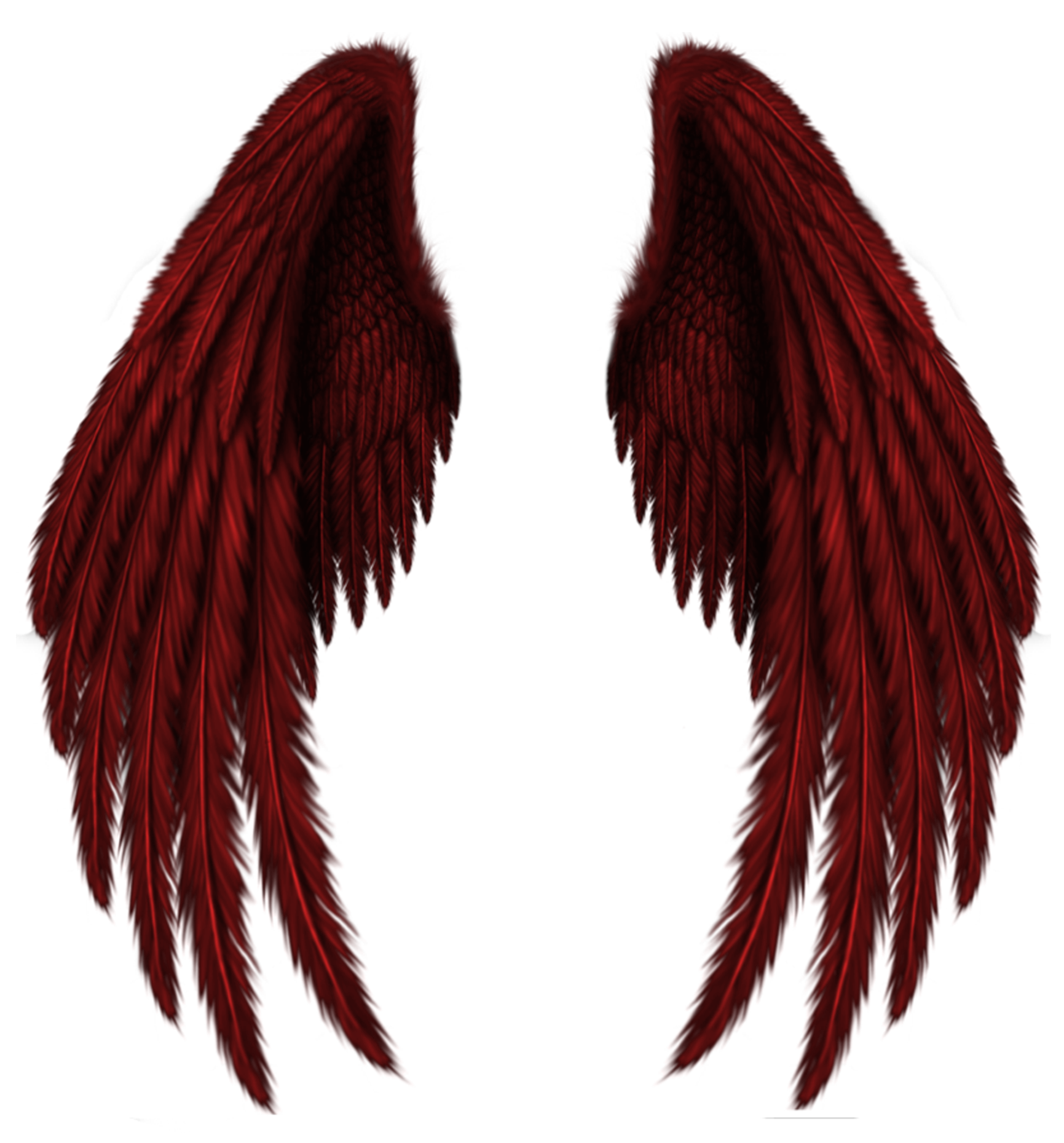 Pin By Ann Techlin On Artistically And Creatively Wings Png
