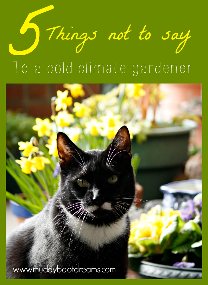 Muddy Boot Dreams: 5 things not to say to a gardener in a cold climate
