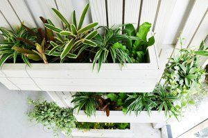 Beau Sheu0027s Looking For A Vertical Garden Watering System For When Sheu0027s Away  From Home. Our Readers Share Self Watering Solutions For A Vertical Garden.