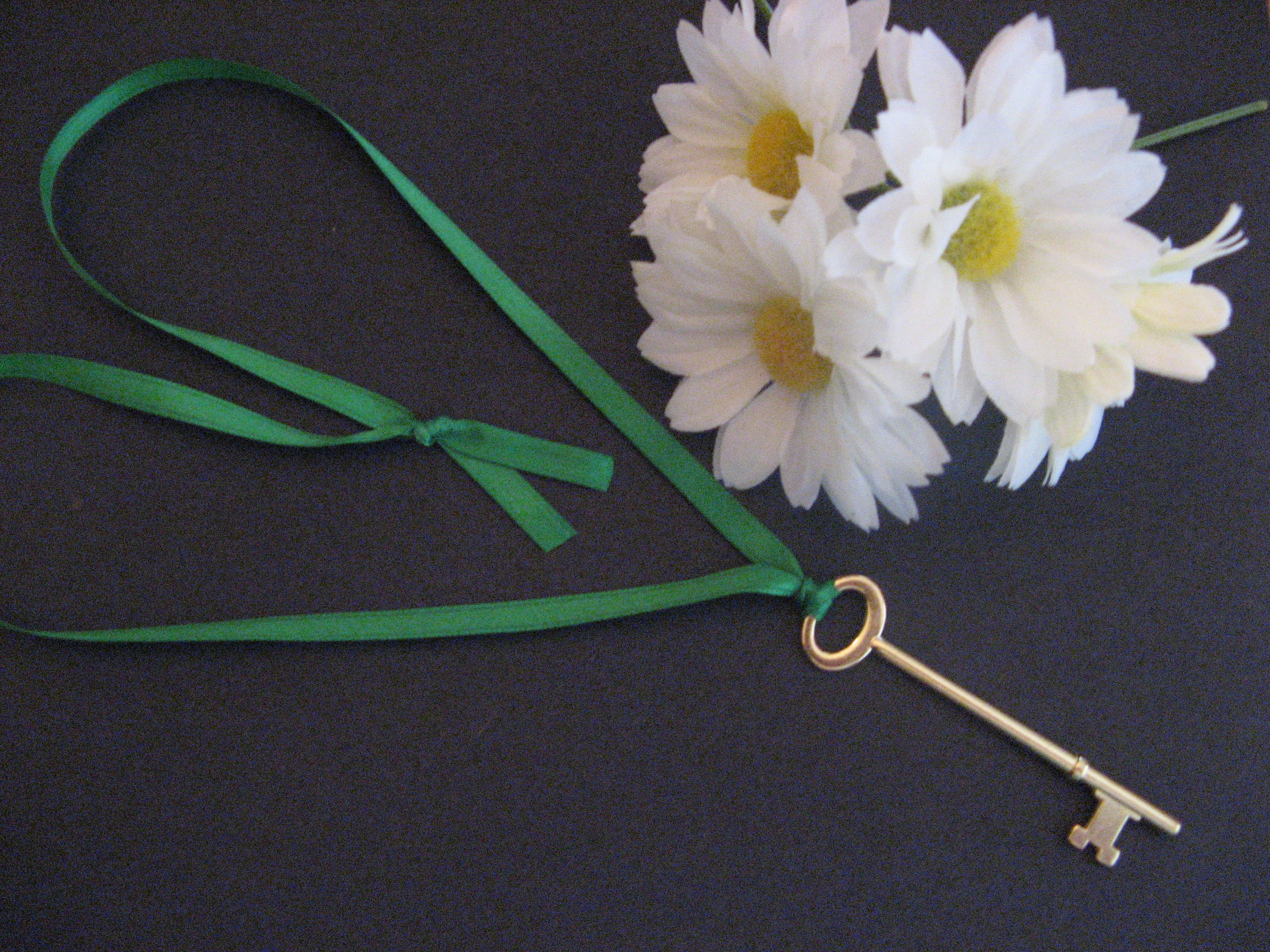 Key to the girl scout daisy flower garden keepsake or swap made key to the girl scout daisy flower garden keepsake or swap made with a izmirmasajfo