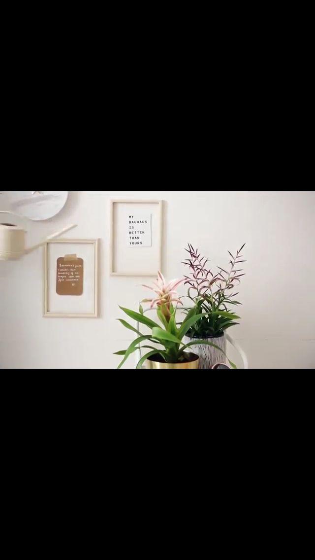 Bromelia's in de slaapkamer