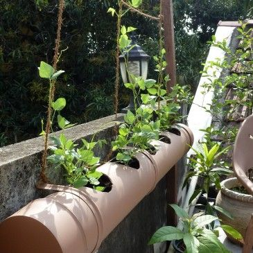 Image result for garden structures