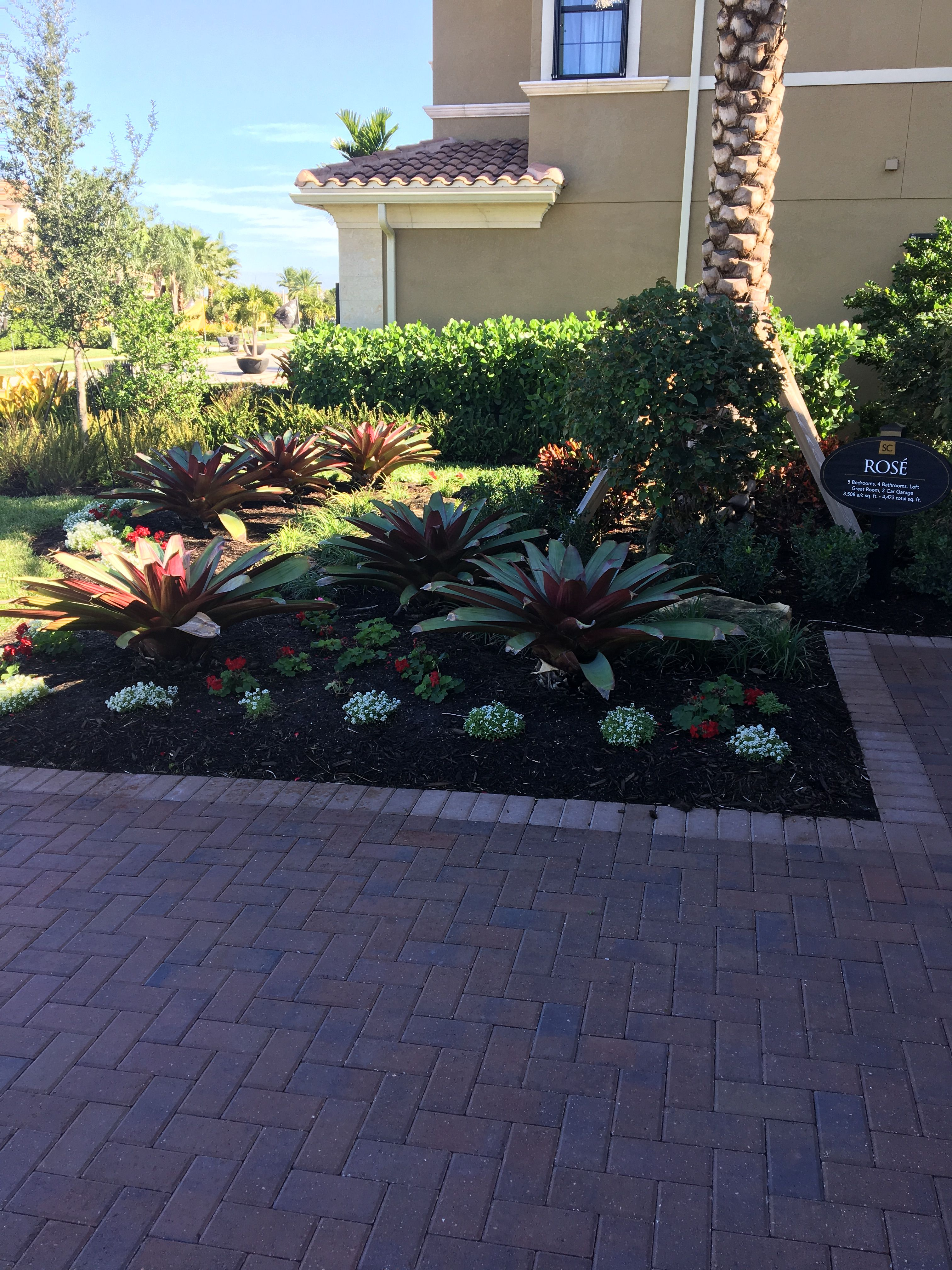 Pin by Dave Marut on Florida landscaping Florida