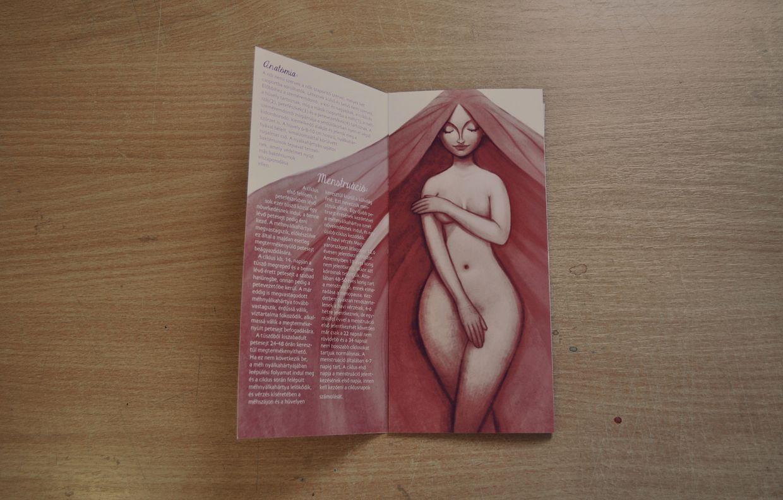 The Female Body – Be Proud! (soft female illustration in brochure 1 ...