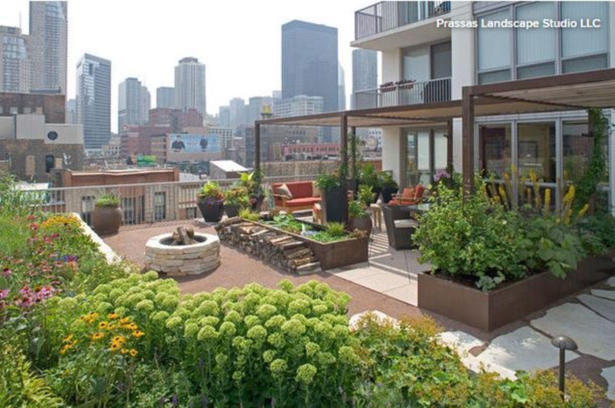 44 Rooftop Garden Ideas To Make Your World Better