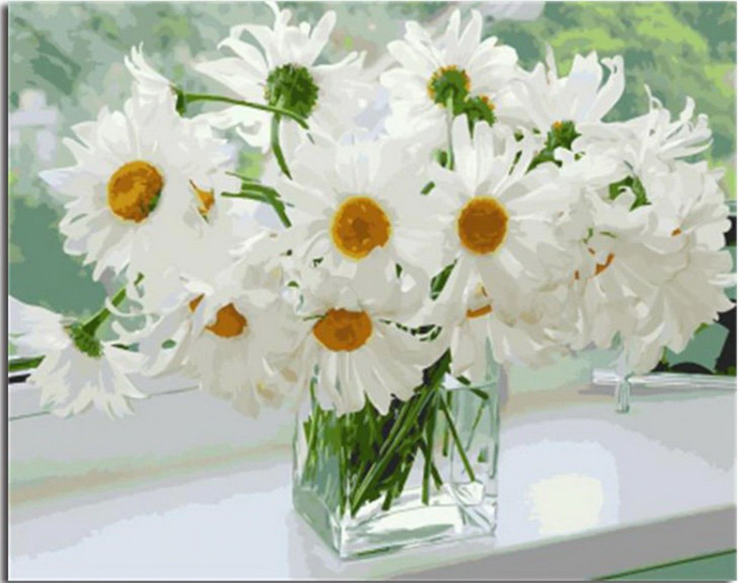 """19.68x15.7"""" Daisies Still Paint by Number, with/without"""